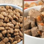 Wet and dry food side-by-side in bowls