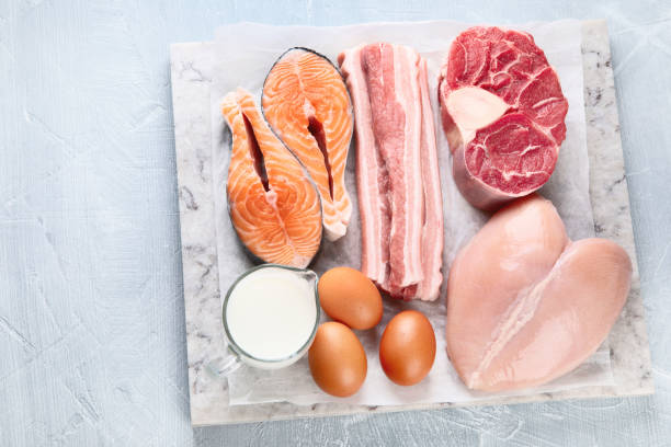 Overhead shot of variety of animal proteins